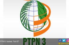 Jumlah Komisaris PTPN Grup Dipangkas - JPNN.com