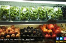 8 Makanan untuk Tingkatkan Kecerdasan Otak Anak - JPNN.com