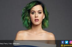 Terbukti Menjiplak, Katy Perry Kena Denda Gede Banget - JPNN.com