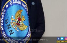 Ada yang Iseng Mencuri Banner Imbauan Milik BNN - JPNN.com