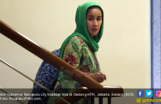 Si Cantik Lily Istri Gubernur Bengkulu, Sudah Menikah Dua Kali - JPNN.com