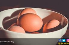 Makan Sebutir Telur Sehari Baik bagi Kesehatan Jantung? - JPNN.com