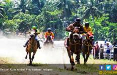 Ketua Persatuan Olahraga jadi Tersangka karena Penonton Pacuan Kuda Ada yang Tewas - JPNN.com