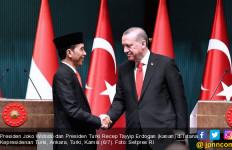 Ini Usulan Presiden Jokowi di KTT OKI untuk Solusi Palestina - JPNN.com