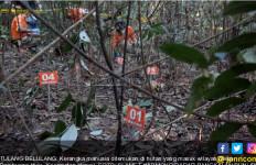 Hiiii... Kerangka Manusia Berserakan di Hutan - JPNN.com