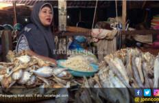 Sering Makan Ikan Asin Bisa Picu Penyakit Kanker? - JPNN.com