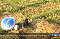 Empat Tahun Jokowi-JK Masih Ada 13.232 Desa Tertinggal - JPNN.com
