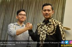 AHY dan Anies dari Oposisi, Lawannya Bukan Gibran - JPNN.com