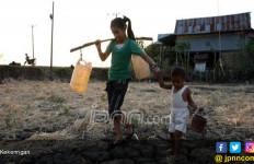 Cuaca Ekstrem: Hujan Lebat tapi Ada Daerah Kekeringan - JPNN.com
