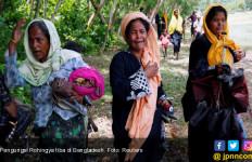 Mahkamah Internasional: Muslim Rohingya Terancam Genosida di Myanmar - JPNN.com