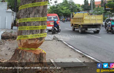 Politikus PKS Protes Gara-Gara Pohon di Pinggir Jalan - JPNN.com
