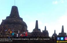 Jejak 63 Spesies Tumbuhan Era Jawa Kuno Terungkap di Relief Borobudur - JPNN.com