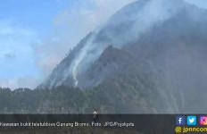 Akhirnya, Api Bukit Teletubbies Padam - JPNN.com