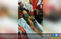 Karyawan Jatuh ke Mesin Penggilingan Kelapa Sawit, Ya Ampun! - JPNN.com