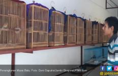 Tenang..Permen 20/2018 Bukan Untuk Larang Penangkaran Burung - JPNN.com
