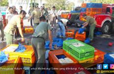 Gakkum LHK Gagalkan Kasus Illegal Perdagangan Satwa - JPNN.com