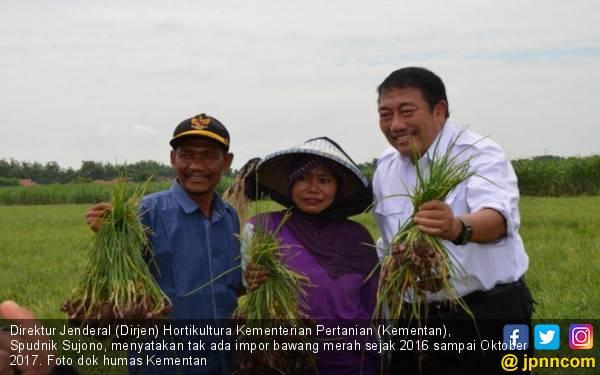 Inas Nasrullah Dinilai Tidak Cermat Terkait Impor Pangan - JPNN.com