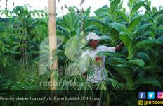 Agus Parmuji: Pergilah ke Ladang untuk Memotong Mata Rantai Penyebaran Corona - JPNN.com