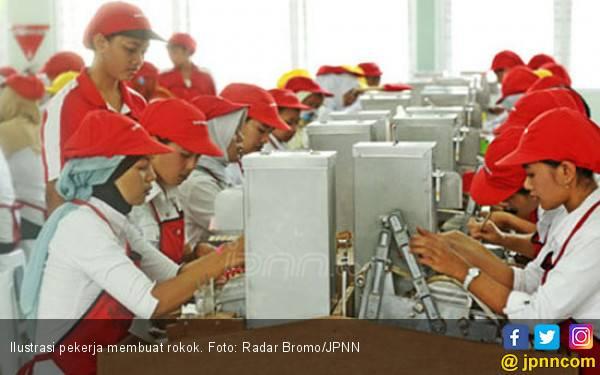 Hanya 10 Persen Pabrik Rokok Mampu Bertahan - JPNN.com