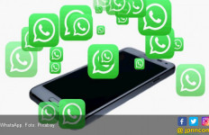 Libra Gagal, WhatsApp Pay Kena Jegal - JPNN.com