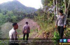 Berhadapan dengan Hewan Buas, Menjebak Muncikari Malaysia - JPNN.com