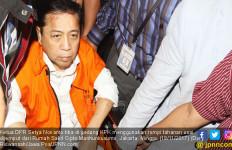 Pelindung Setya Novanto Tak Perlu Dipilih Lagi di Pemilu - JPNN.com