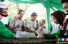 Peringati Hari Pohon, DTFL Tuntaskan Tanam 15.446 Trembesi - JPNN.com
