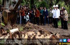 Jokowi Hadiri Peremajaan Sawit Rakyat di Serdang Bedagai - JPNN.com