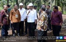 Jokowi Pengin Indonesia Bisa Terdepan soal Pengelolaan Sawit - JPNN.com