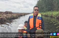 Gugatan Kasus Karhutla, KLHK Menang, WAJ Didenda Rp 466 M - JPNN.com