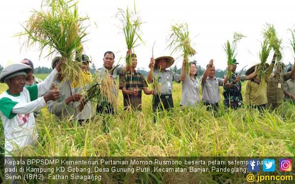 Kementan Wajibkan Penyuluh Pertanian Untuk Dirikan Korporasi Petani - JPNN.com
