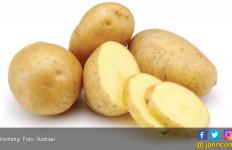 7 Makanan Ini Bisa Bikin Kamu Awet Muda - JPNN.com