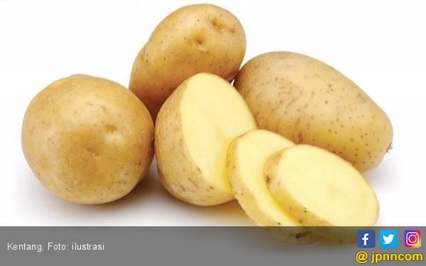 Ketahui Bahaya Makan Kentang Mentah - JPNN.com