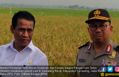 Siapa Pengganti Irjen Setyo Wasisto di Satgas Pangan Polri? - JPNN.com
