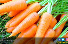Bolehkah Penderita Diabetes Makan Wortel? - JPNN.com