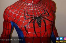 Penulis Naskah Spider-Man Wafat - JPNN.com