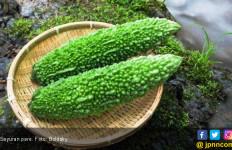 Benarkah Sayuran Pahit Ampuh Usir Kanker? - JPNN.com