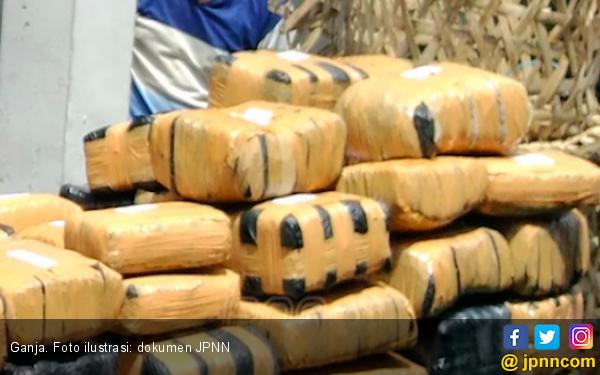 Baru Keluar Penjara, Nazar Sudah Jualan 26.530 Butir Pil Koplo dan Ganja - JPNN.com