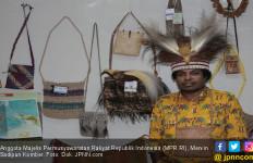 Pemerintah Harus Segera Menetapkan Status KLB di Papua - JPNN.com