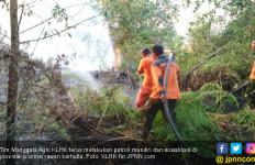 RUU Cipta Kerja: Karhutla di Area Konsesi jadi Tanggung Jawab Perusahaan! - JPNN.com