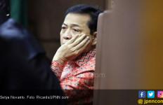 Novanto Gagal Tembak Elite PDIP Dalam Kasus Korupsi E-KTP? - JPNN.com