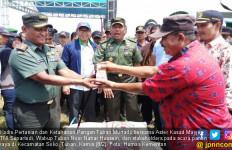 Tim Serap Gabah Targetkan Tuban Jadi Proyek Percontohan - JPNN.com