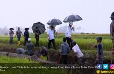 Pak Jokowi Rela Kehujanan Demi Padat Karya di Tanah Datar - JPNN.com