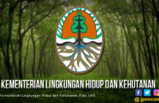 P3HH Luncurkan FORPRO, Forest Products - More Than Technology - JPNN.com