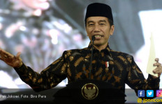 Jokowi ke Pengusaha Daerah: Kita Bicarakan di Istana - JPNN.com