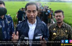 Blusukan ke Sawah, Presiden Jokowi Kehujanan Lagi - JPNN.com
