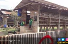 Ki Musbar: Beras Busuk Tak Bisa Jadi Pakan Unggas - JPNN.com