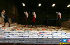 Buwas: Beras Kita Cukup, Kemungkinan Bisa Ekspor - JPNN.com