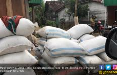 Gabah Rp 4.000 per Kg, Petani Blora dan Rembang Semangat - JPNN.com