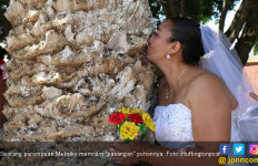 Sekelompok Wanita di Meksiko Gelar Ritual Menikahi Pohon - JPNN.com